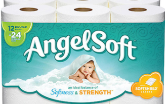 Save $1.00 off (1) Angel Soft Toilet Paper Coupon
