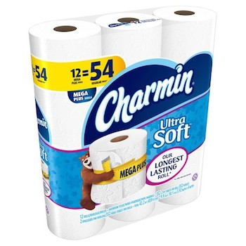 picture about Charmin Coupon Printable identify Conserve $1 off Charmin Lavatory Paper with Printable Coupon - 2018