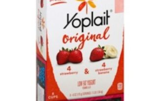 Save $1.00 off (1) Yoplait Yogurt 8-Packs Printable Coupon