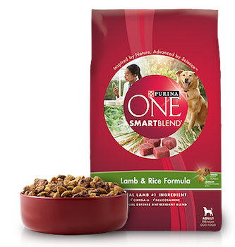 photograph relating to Purina One Printable Coupon identified as Preserve $2 off Purina 1 Dry Canine Foodstuff with Printable Coupon - 2018
