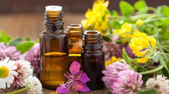 *NEW* FREE Essential Oil Samples – Get it Today!