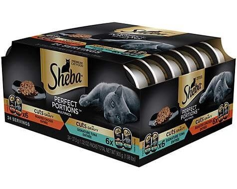 picture relating to Printable Cat Food Coupons named Sheba Cat Foodstuff Discount codes Acquire 5 Receive 5 Totally free PRINTABLE COUPON