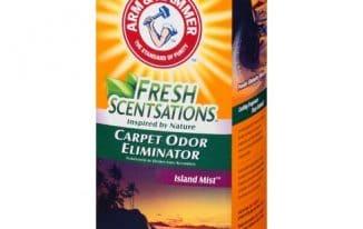 Save 0.50 off (2) Arm & Hammer Carpet Deodorizer Coupon