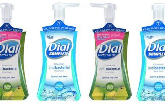 Save $1.50 off (2) Dial Foaming Hand Washes Printable Coupon