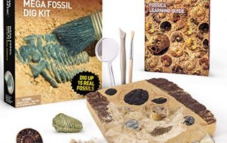 SAVE 33% on NATIONAL GEOGRAPHIC Mega Fossil Dig Kit