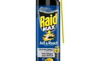 Save $0.55 off (1) Raid Ant & Roach Killer Printable Coupon