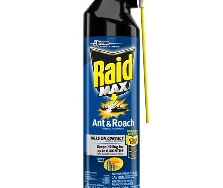 Save $0.55 off (1) Raid Ant & Roach Killer Printable Coupon
