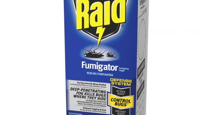 Save $0.75 off (1) Raid Fumigator Printable Coupon