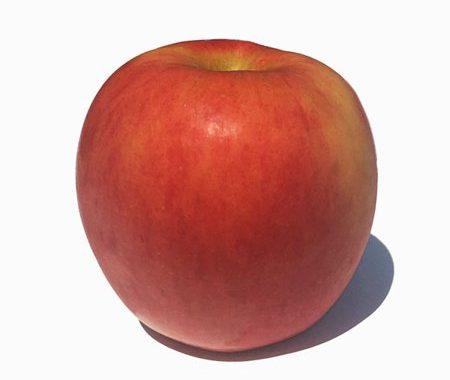 Save $0.75 off any (1) Koru Apples Printable Coupon