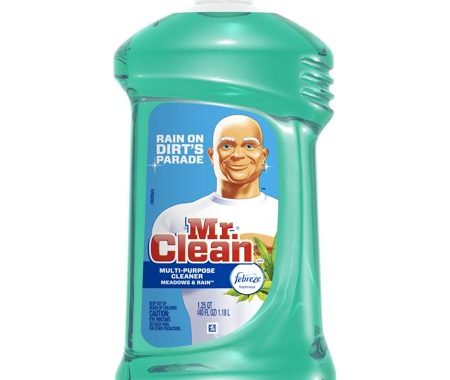 Save $1.00 off (2) Mr. Clean Multipurpose Cleaner Coupon
