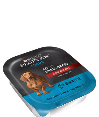 Save $2.00 off (10) Pro Plan Focus Small Breed Wet Dog Food Coupon