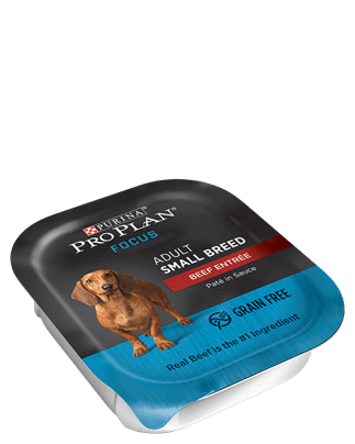 photo about Purina Pro Plan Printable Coupons identified as Help you save $2.00 off (10) Skilled Program Consideration Minimal Breed Soaked Doggy Foodstuff