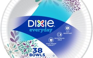Save $1.00 off (1) Dixie Everyday Paper Bowls Coupon